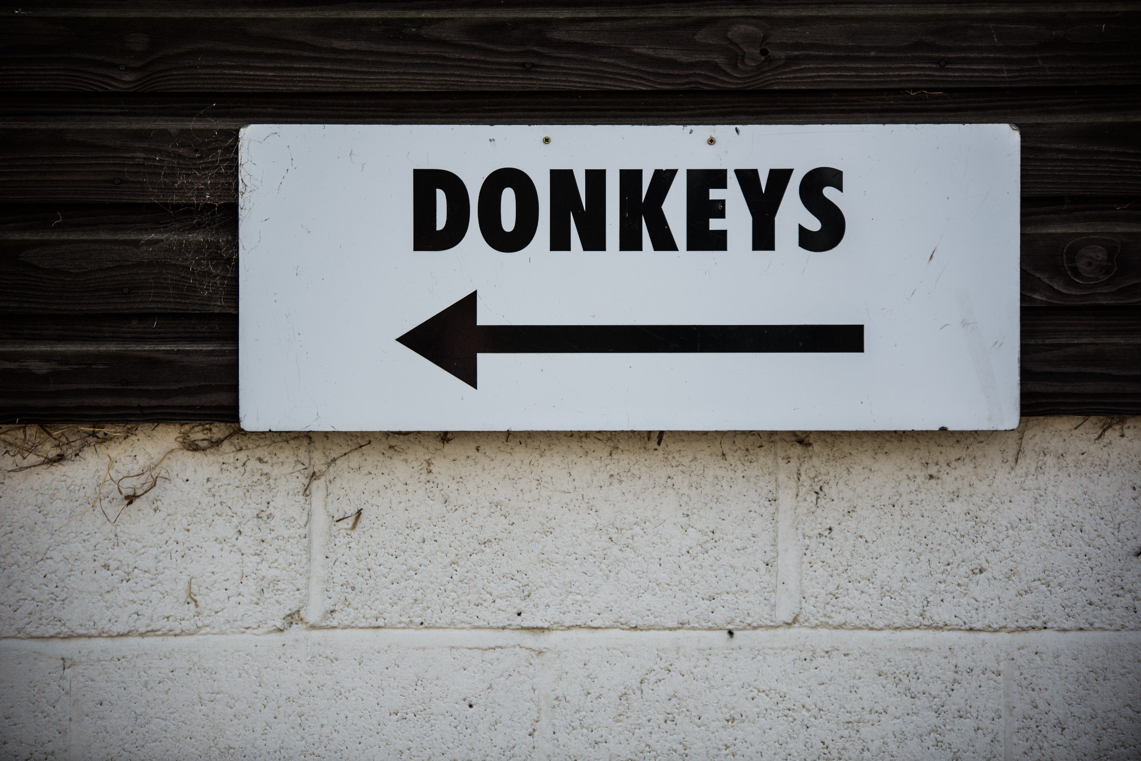 "Sign with the word ""DONKEYS"" printed on it and an arrow pointing to the left."